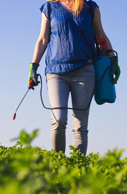 Spraying weed killer Roundup in field