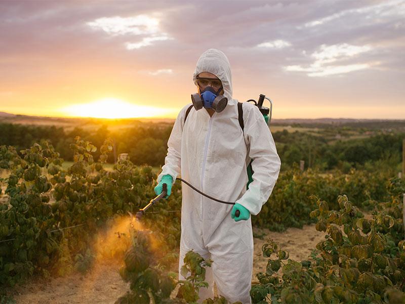 Man spraying herbicide.